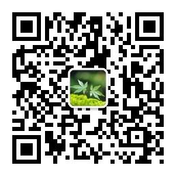 秋枫阁-微信